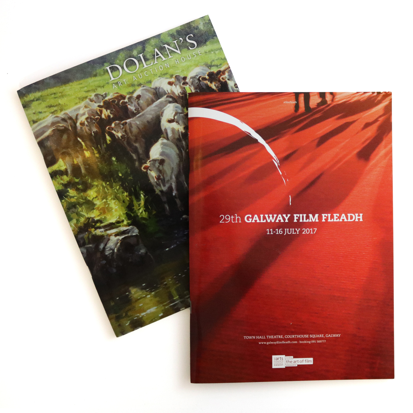iSupply design and print work example for Galway Film Fleadh